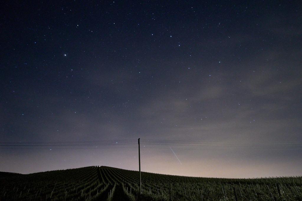 Nacht über den Reben