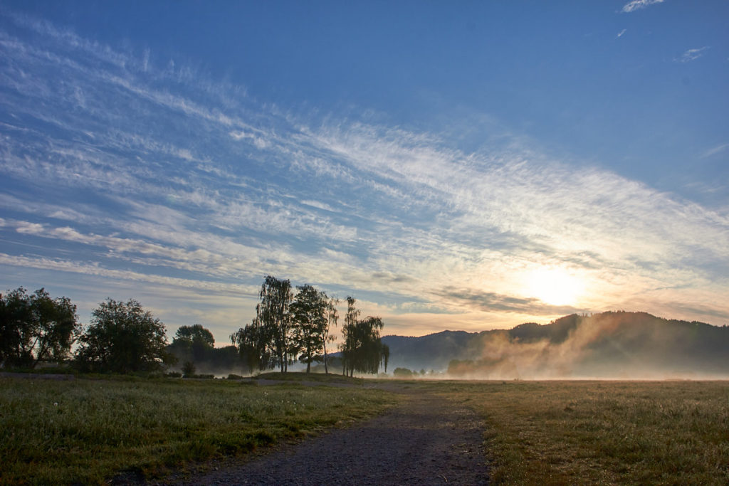 Morgenwiese2