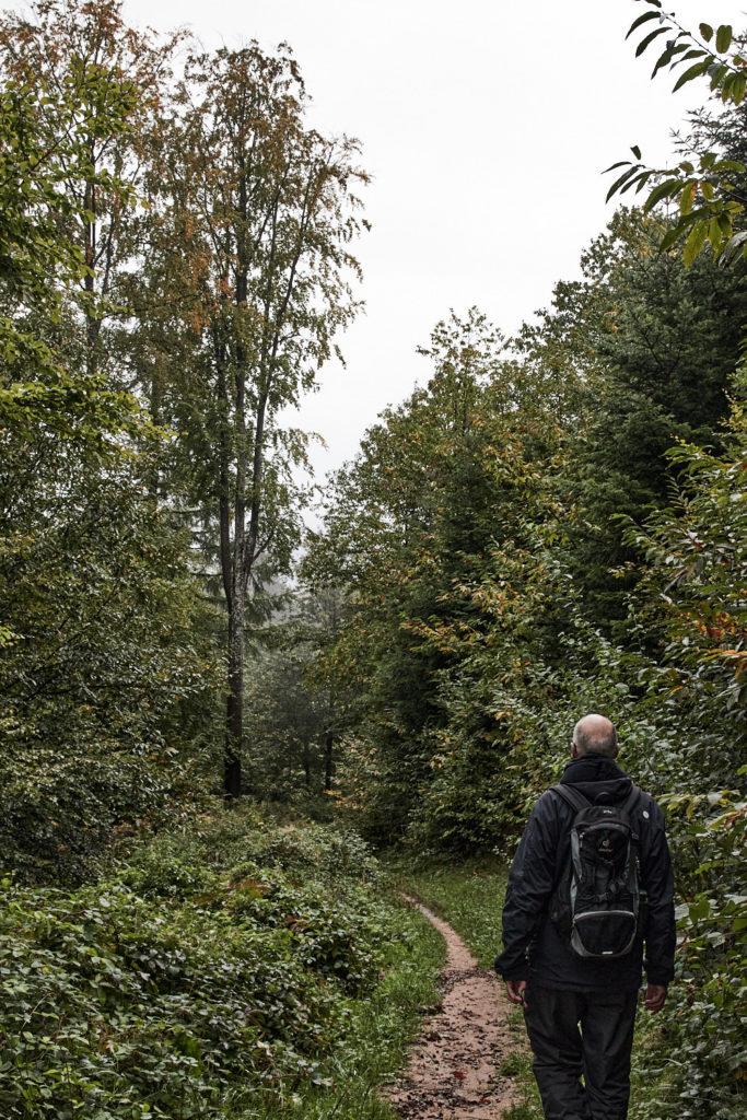 Wald10