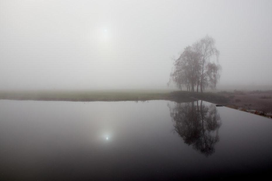 Nebel14