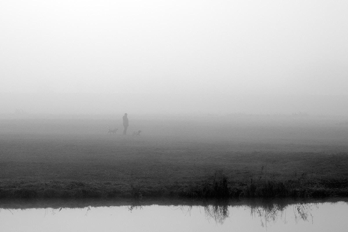Nebel13