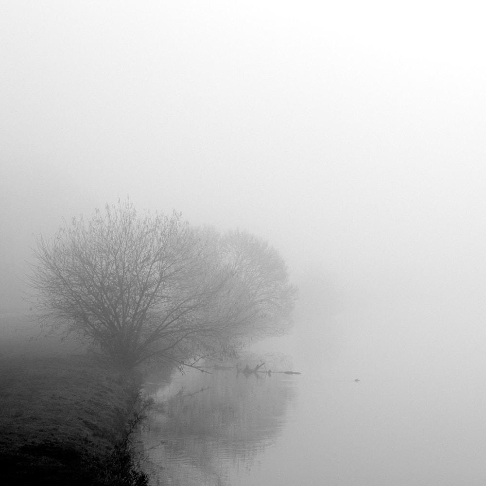Nebel12