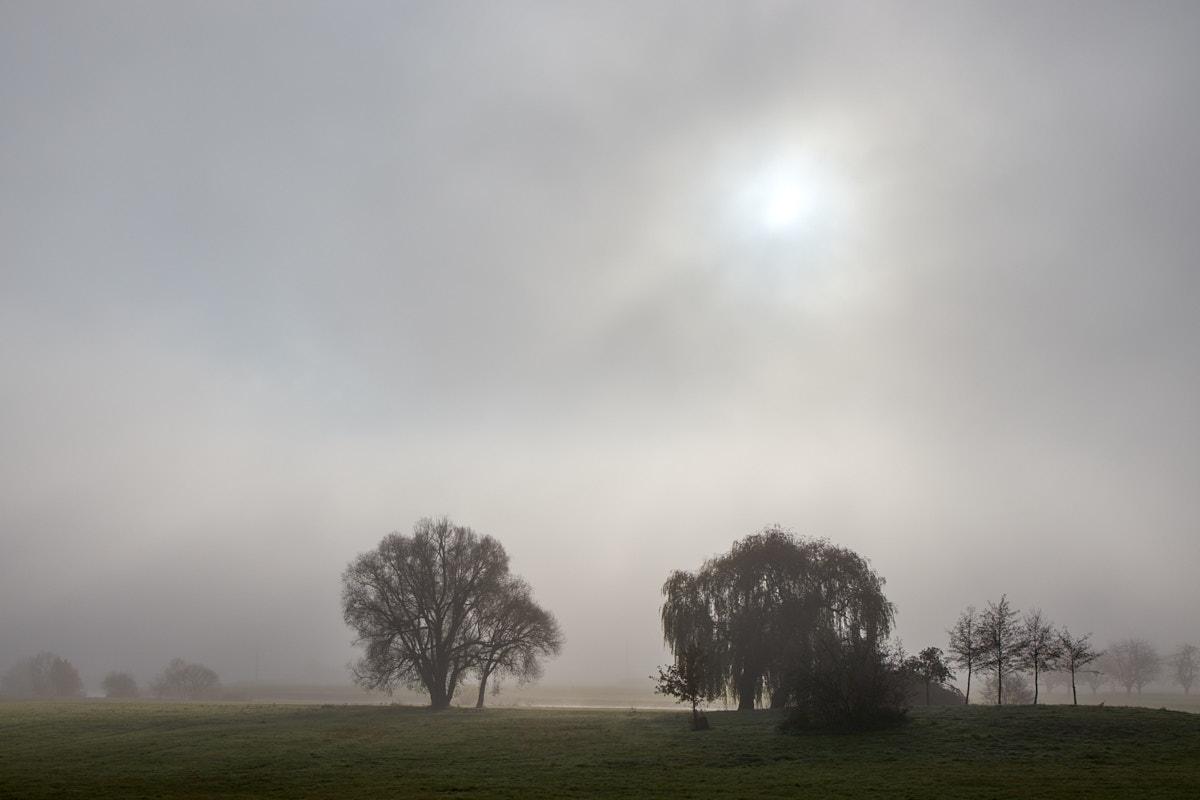 Nebel11