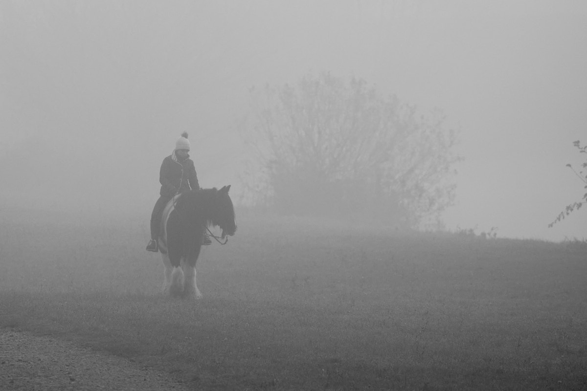Nebel10