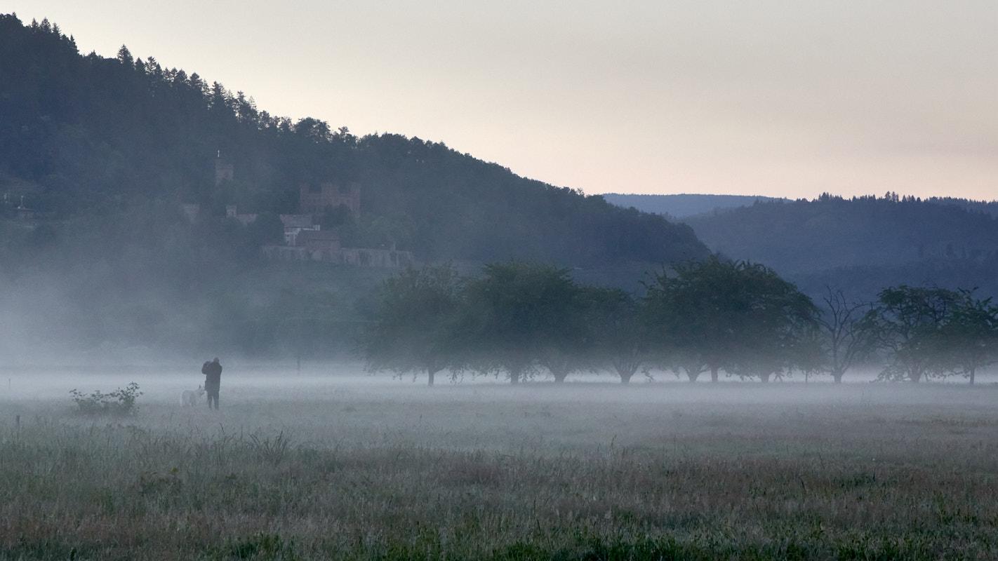 Nebel9