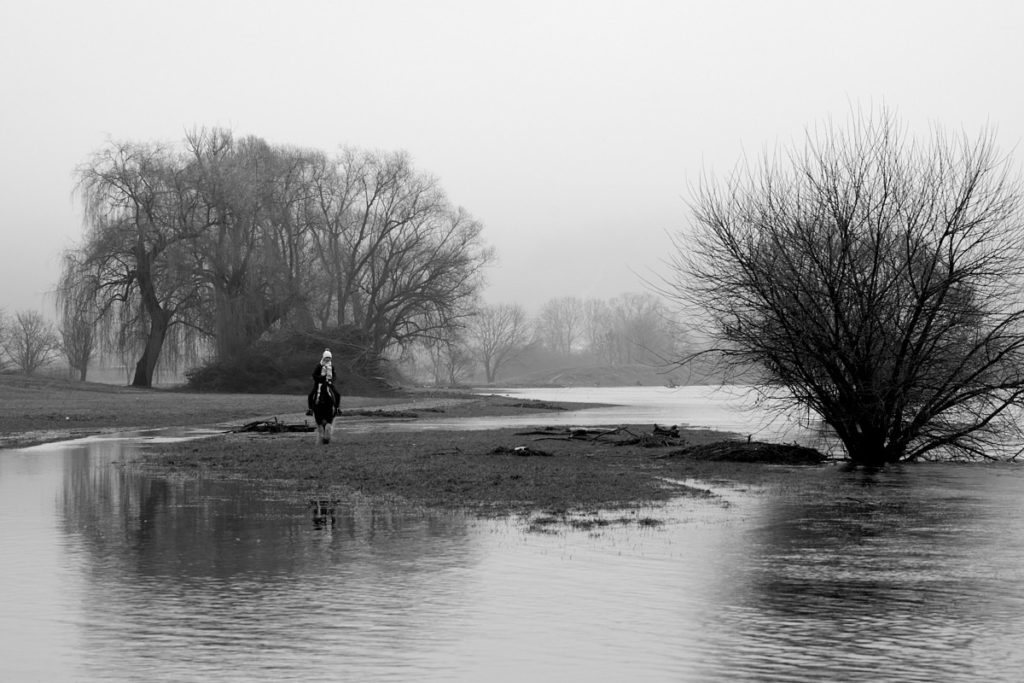 Seenlandschaft11
