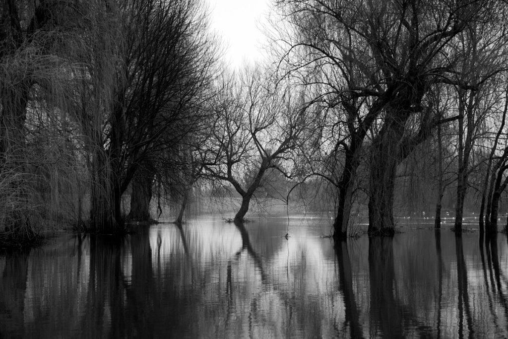 Seenlandschaft9
