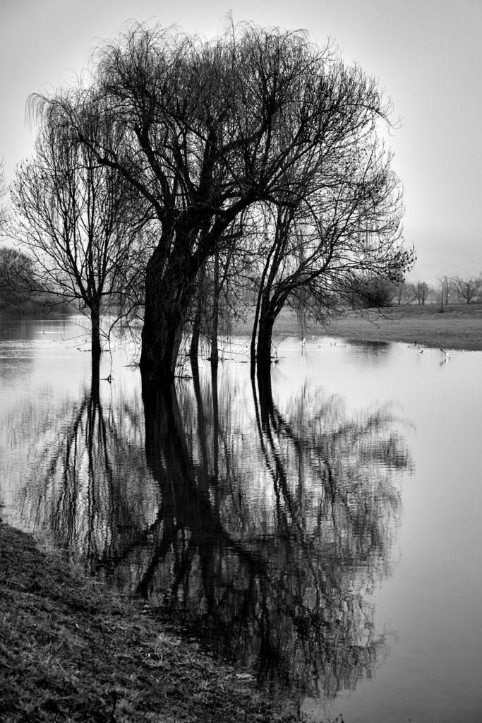 Seenlandschaft5