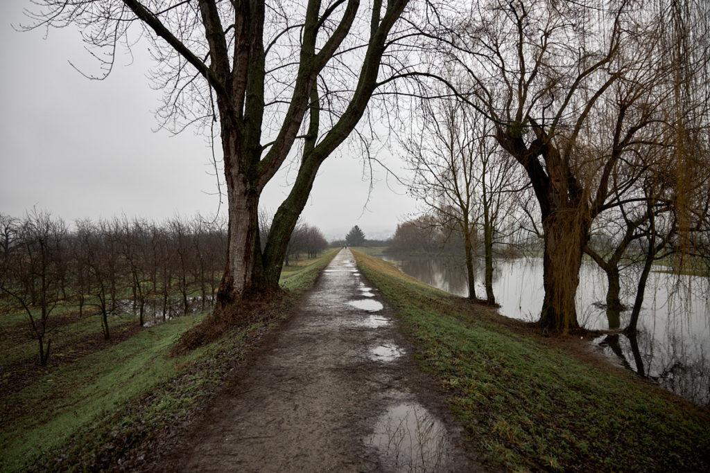 Seenlandschaft4