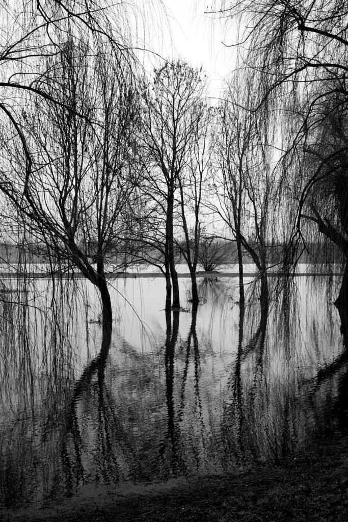 Seenlandschaft3